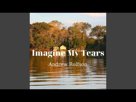 Andrew Rolfson - Imagine My Tears mp3 ke stažení