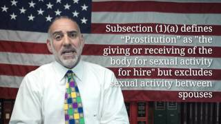 What's the Difference between a Prostitute and an Escort? (84) Michael A Haber Miami Criminal Lawyer