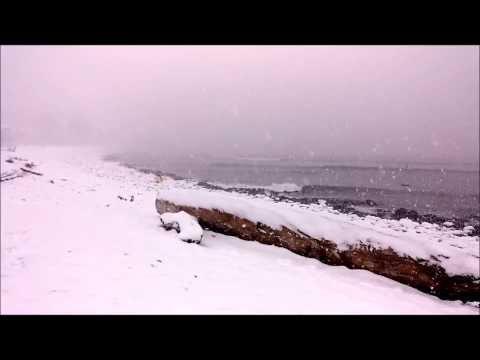 Seaside Cove Snow Surfers