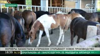 Фермеры Казахстана и Германии открывают новое производство(, 2016-05-12T12:58:55.000Z)