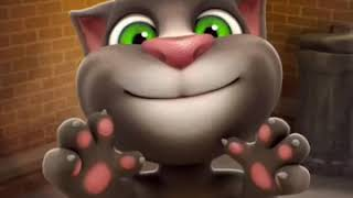 Talking Tom - Slapping Cat