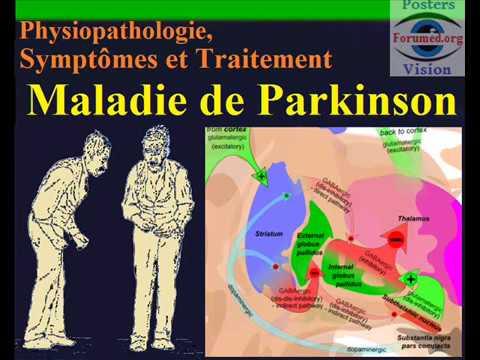 Maladie de parkinson physiopathologie symptomes traitement