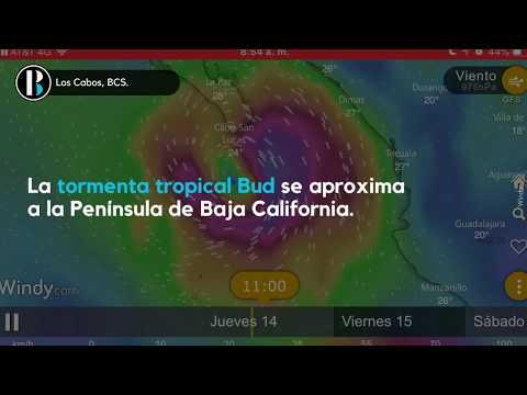 Tormenta tropical Bud   Condiciones del Clima