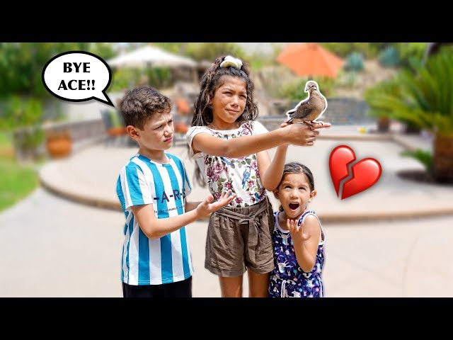 Saying GOODBYE To Our BIRD Forever!! **EMOTIONAL** | Familia Diamond