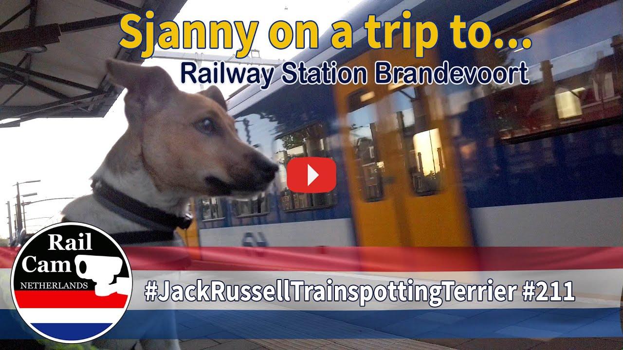 Railcam Sjanny on a trip to  Railway Station Brandevoort #211