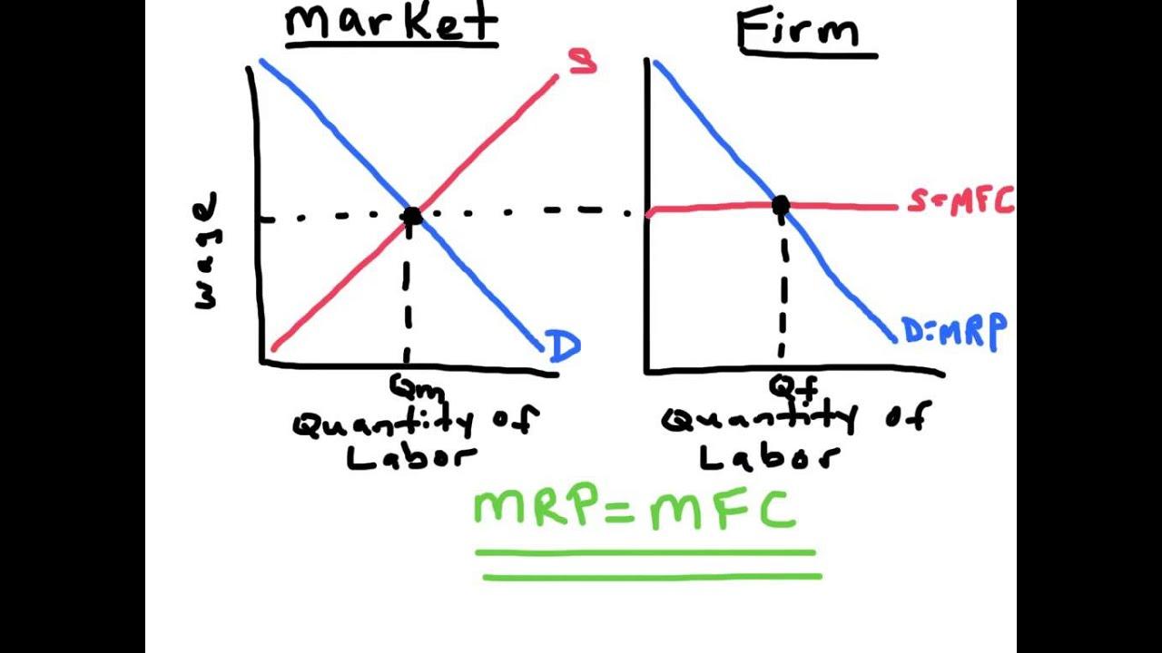 perfectly competitive labor markets ap microeconomics [ 1024 x 768 Pixel ]