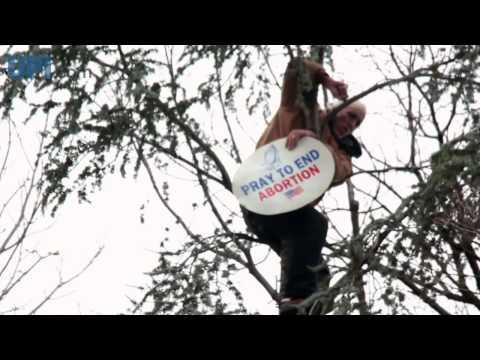 Inauguration Tree Man - Anti-Abortion Activist Climbs Capitol Tree to Warn of Damnation