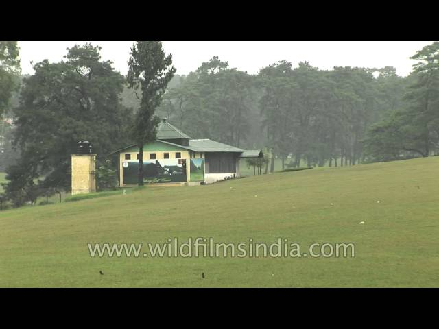 Finest Golf Link of India in Shillong, Meghalaya