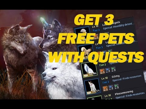 Black Desert Online How To Get Three Free Pets Youtube