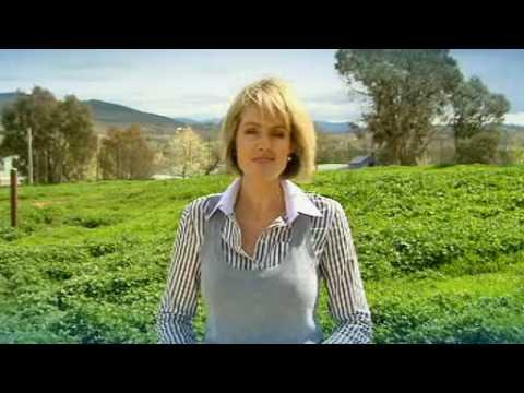 RSPCA Wildlife - Canberra's only licensed carer