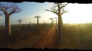 Afryka - kontynent początków