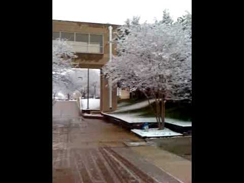 Snow at UT Dallas