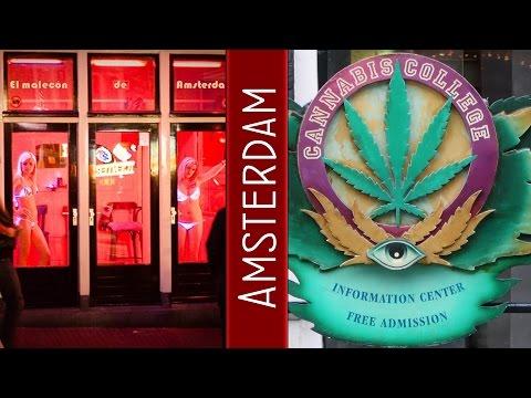 Amsterdam Red Light District, Cannabis Coffee Shop, Bulldog Weed  Shop