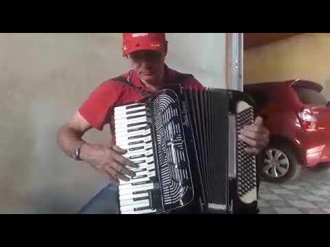 Valsa Natalino  do acordeon