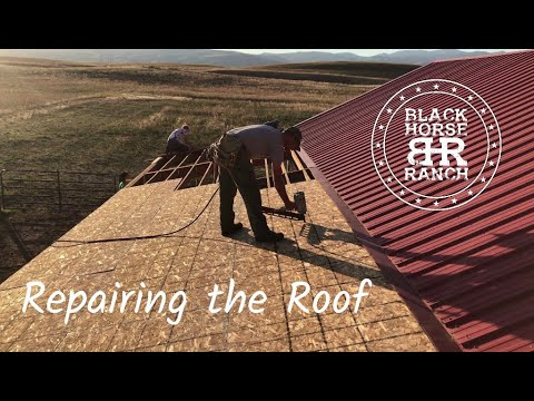 Remove and Replace Metal Roof - Brooder Repairs