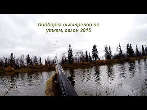 Охота на утку осенью с чучелами, скрадок для охоты