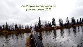 Охота на уток, замедленные выстрелы в лет с МР-155.