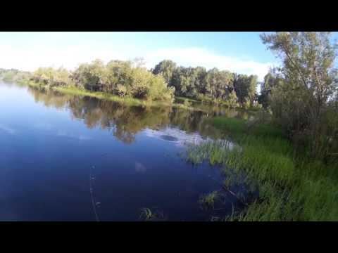 рыбалка в луговом ульяновск