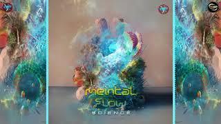 Mental Flow - Protoscience