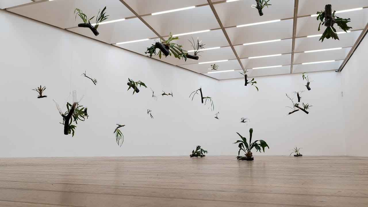 Image result for Nottingham Contemporary - Daniel Steegmann Mangrané