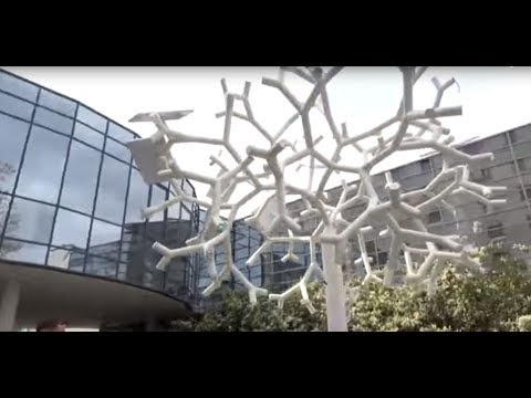 Creating Smart Cities: Solar Tree to charge your phone and provide WIFI