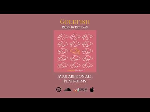 Pat Ryan - Goldfish (Audio)
