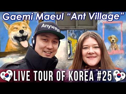 "Gaemi Maeul ""Ant Village"" 개미마을 - LIVE TOUR OF KOREA #25"