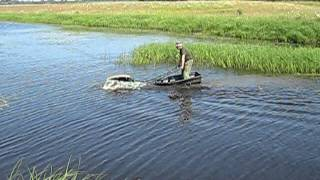 Железная мотособака против мясной собаки, кто быстрее?