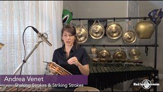 Andrea Venet: Tambourine Shake Strokes