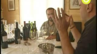 101 Gastronomía Dvds Vinos Patricio Tapia Secretos Del Vino Sur