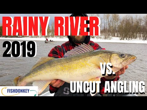 Rainy River 2019 Uncut Angling VS. Everybody Fish Donkey Walleye Tournament | PB'S!!