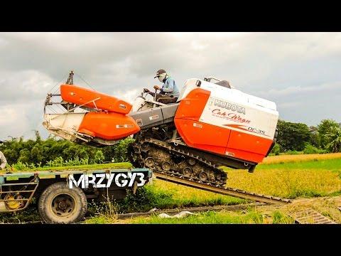 Kubota DC-35 Combine Rice Harvester Working Mesin Pemanen Padi