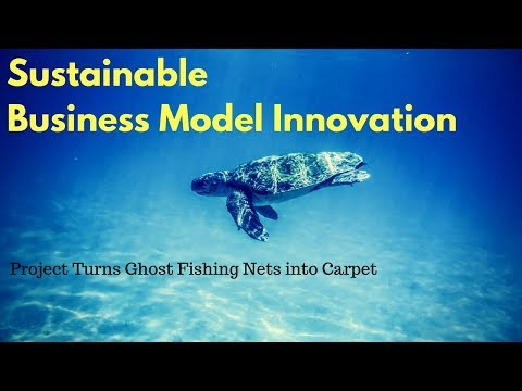 Business Model Canvas Example, Interface Case Study On Sustainable Business Model Innovation