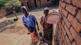 Building resilience for a Sustainable food future in Africa