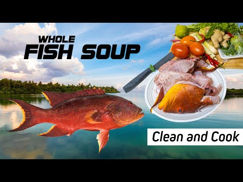 FISH SOUP | CLEAN AND COOK