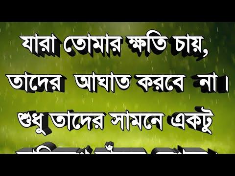 এটি আপনাকে নতুন ভাবে বাঁচতে শেখাবে ||  life changing motivational quotes || Bangla Bani