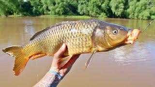 using-carp-as-bait-for-prehistoric-fish