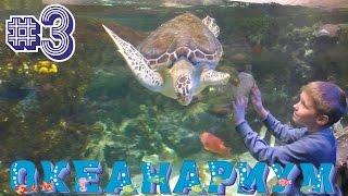 Океанариум Воронеж #3 Подводный мир ОКЕАНА Зубастая Акула плавает МУРЕНЫ МОРСКИЕ ЧЕРЕПАХИ ОБИТАТЕЛИ