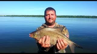 Фидер на Волге | Ловля Леща | Воспоминания летней рыбалки