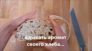 Как легко научиться дома печь хлеб на закваске