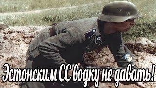 """""""Эстонским СС водку не давать"""". сказал генерал-майор войск СС Франц Аугсбергер. военные истории"""