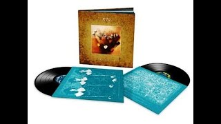 XTC - Earn Enough For Us- Skylarking Skylarking 2010 double vinyl L...