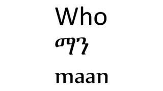 wh questions in amharic ethiopian language