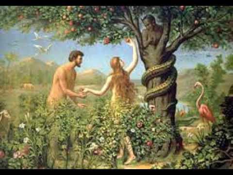 Chalayana - Adamu Na Hawa