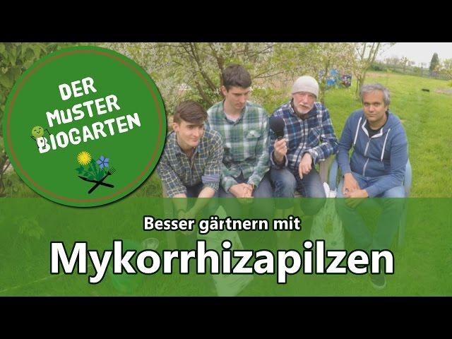Wie Mykorrhiza Pilze Im Garten Ihre Ernte Verbessern Können ... Garten Dezember Wo Was Verbessern