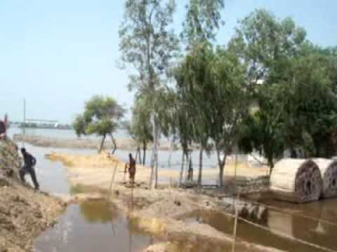 Flood Mehar City Dadu Sindh Pakistan 6-9-2010