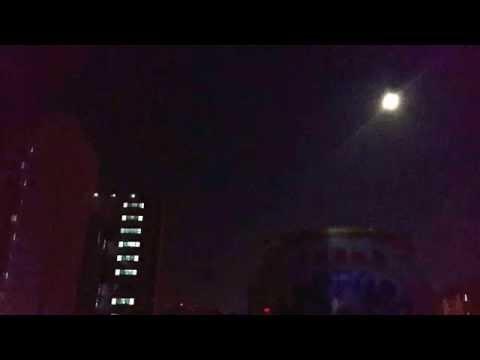 Sound of a bug, Night in Seoul. ASMR