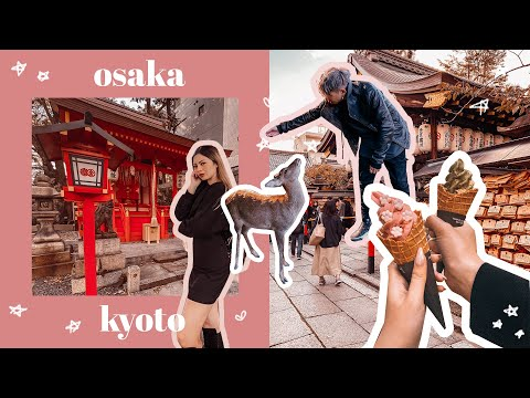 Osaka Kyoto Nara 5 day Travel Itinerary 🌟 Food, Shopping in Japan