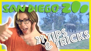 San Diego Zoo   21 Tips and Tricks   Southern California Vacation