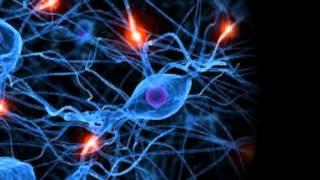Активация и балансировка обоих полушарий мозга(, 2014-02-13T17:28:51.000Z)